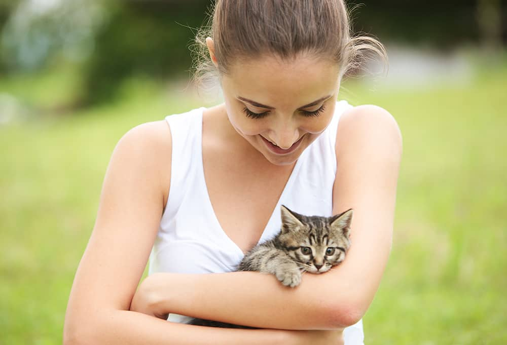 Tierhaar Allergie - Katzen-Allergie und Hunde-Allergie